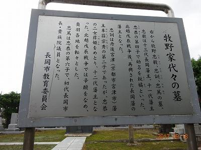 nagaoka_117.jpg