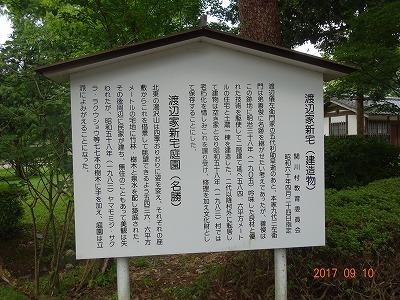 sekikawa_022.jpg