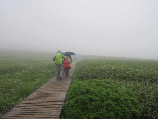 IMG1378JPG雨の弥陀ヶ原
