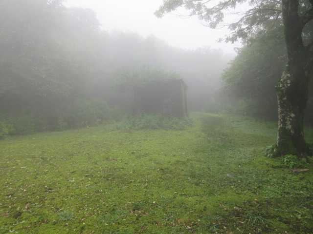 IMG1614JPG霧の馬攻め場
