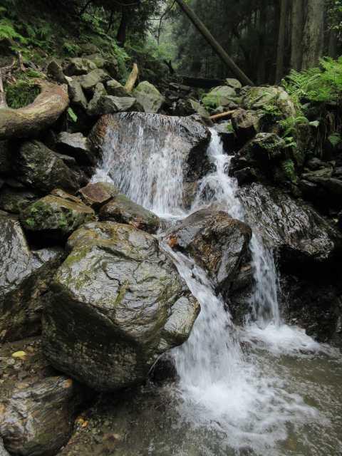 IMG1816JPG増水の小滝