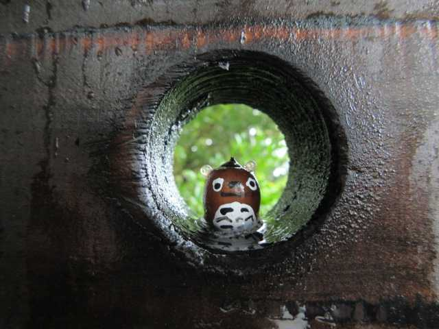 IMG1839JPG濡れたトトロさん