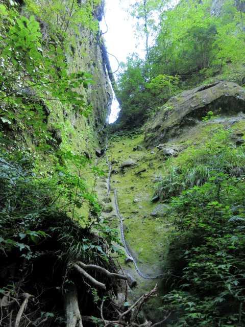IMG1860JPG望雲台の岩場を見上げる