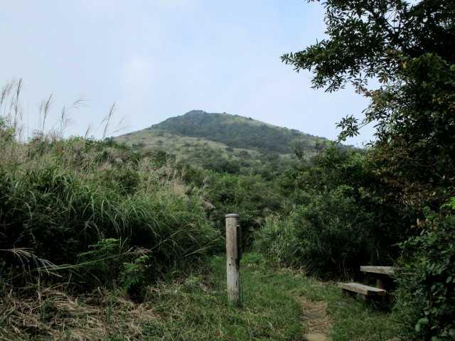 IMG1998JPG福智平より山頂