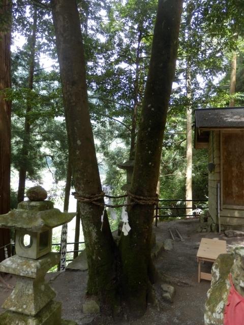 7.1金持ち神社 (15)_resized