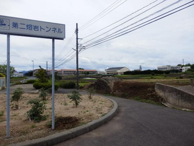 7.2大根島 (8)10:58_resized