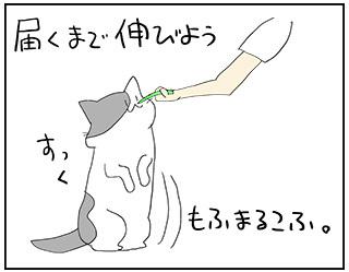 todokanu3.jpg