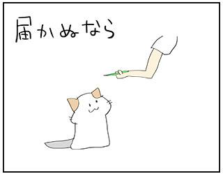 todokanu6.jpg