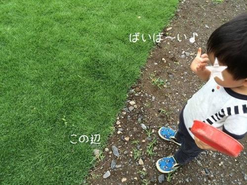 IMG_8646.jpg