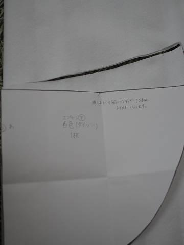 P8088018.jpg