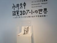 永井秀幸 錯覚3dアートの世界
