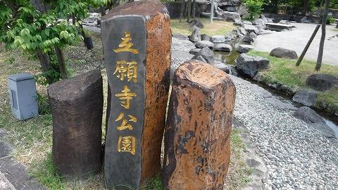 2017.7.22玉名温泉