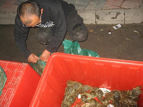 チャイ蟹3