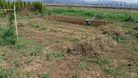 2017.8.18草刈り