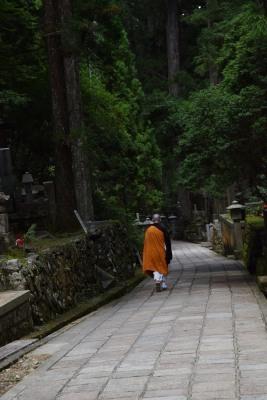 杉林僧侶DSC_0981