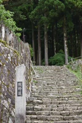 階段DSC_0075