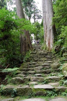 階段DSC_0119