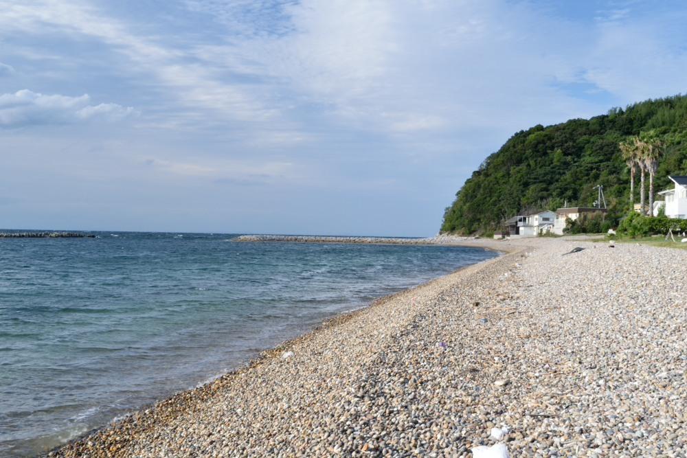 浜全体DSC_0125