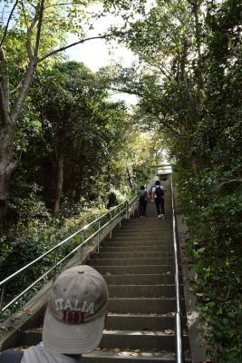 おのころ神社階段DSC_0384