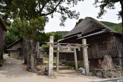神社DSC_0664
