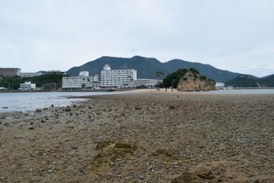 潮が引いて石DSC_0490