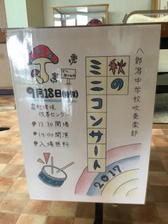八中吹奏楽~商店街花飾り 002