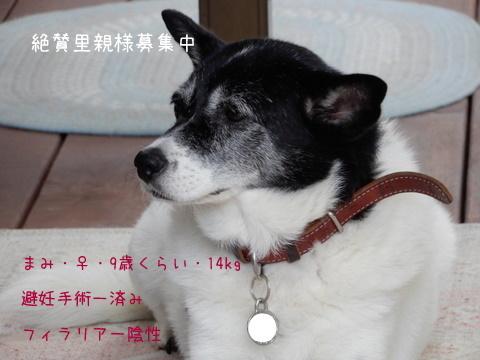 DSCN6423-2.jpg