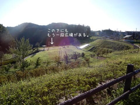 DSCN6449.jpg