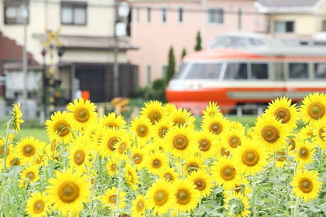ATSU9810s2.jpg