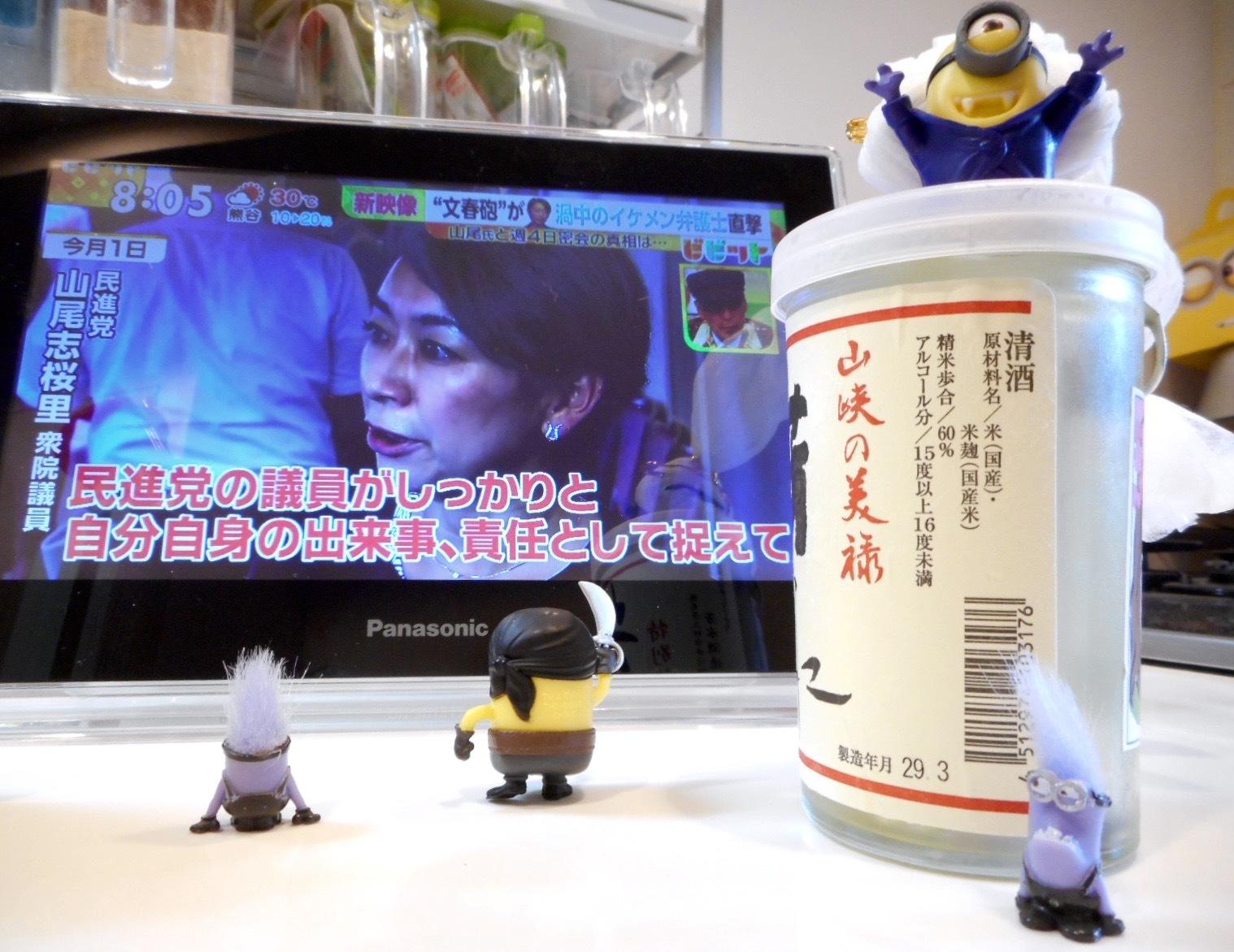 housui_cup29_3_2.jpg