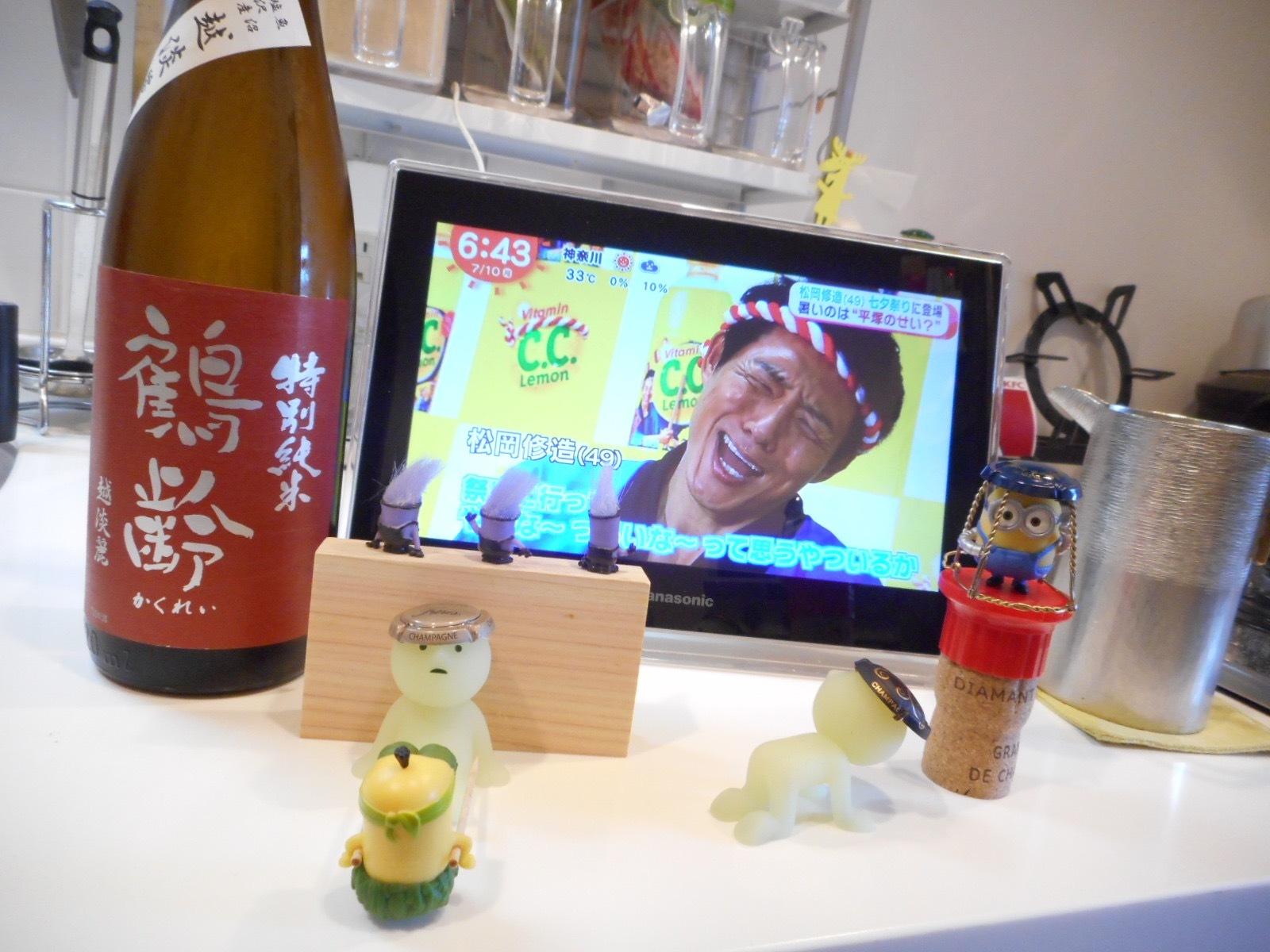 kakurei_koshitanrei28by1.jpg