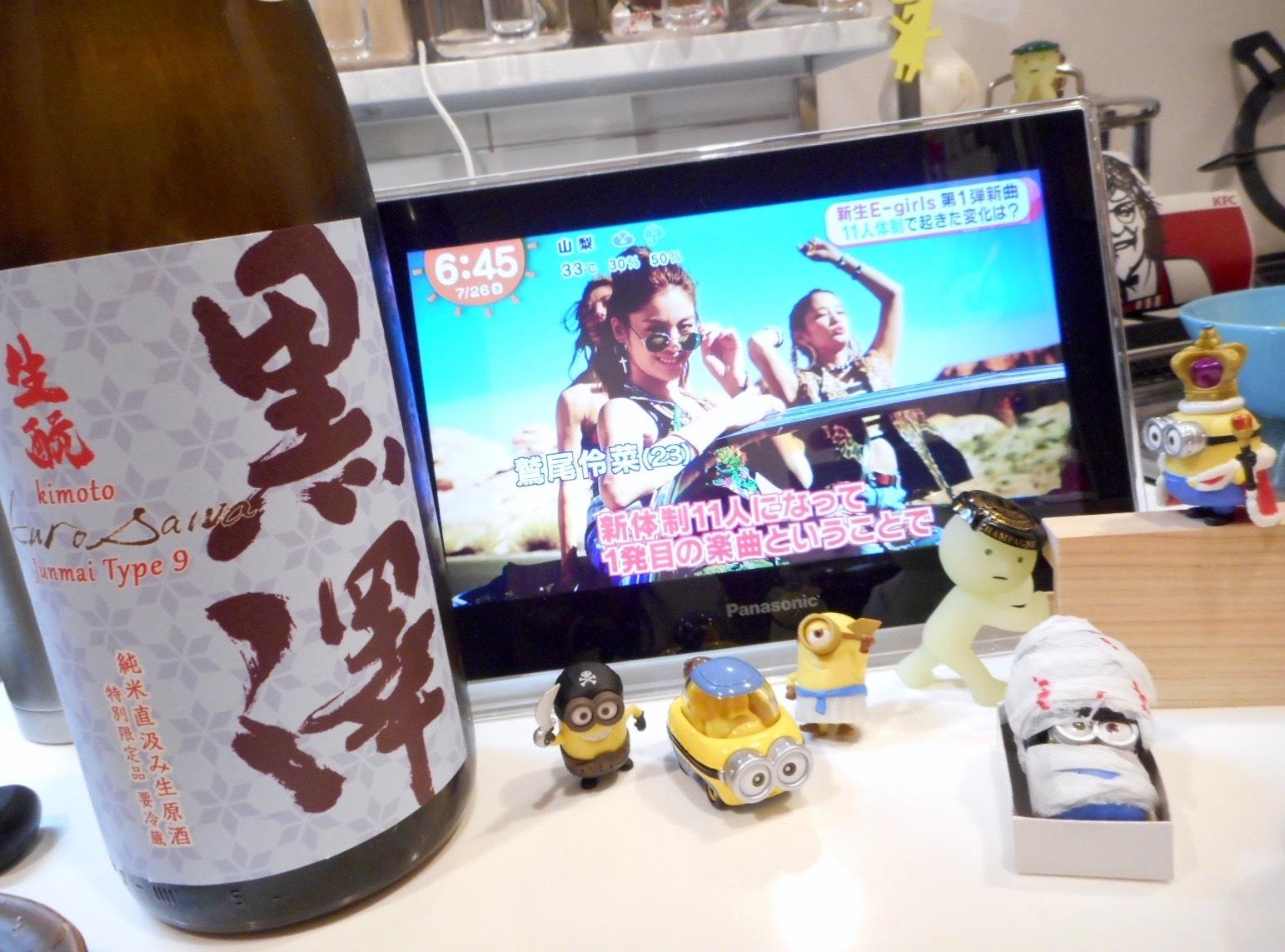 kurosawa_type9_28by13.jpg