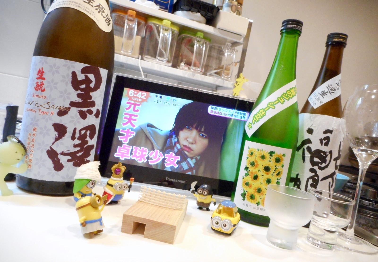 kurosawa_type9_28by15.jpg