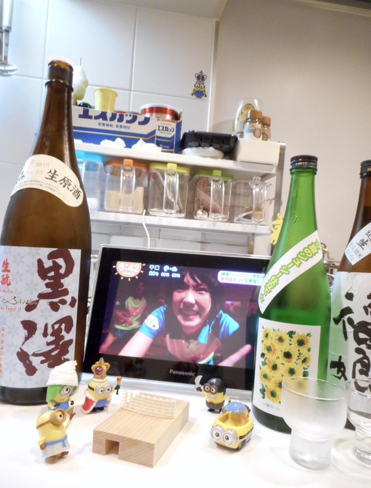 kurosawa_type9_28by16.jpg