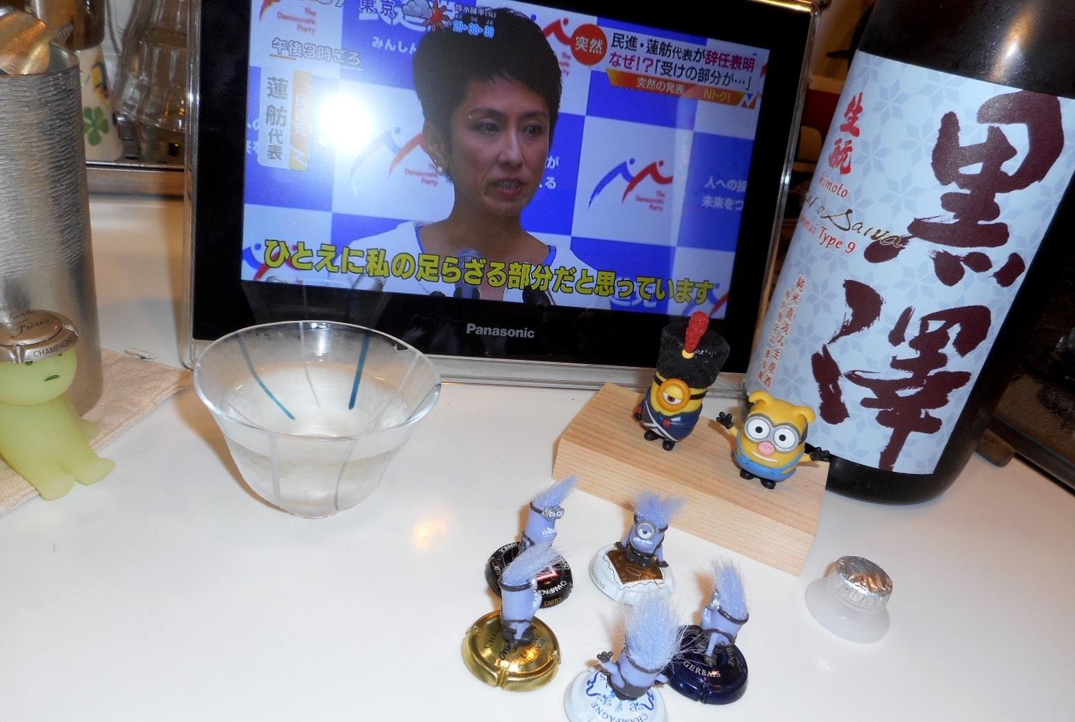 kurosawa_type9_28by17.jpg