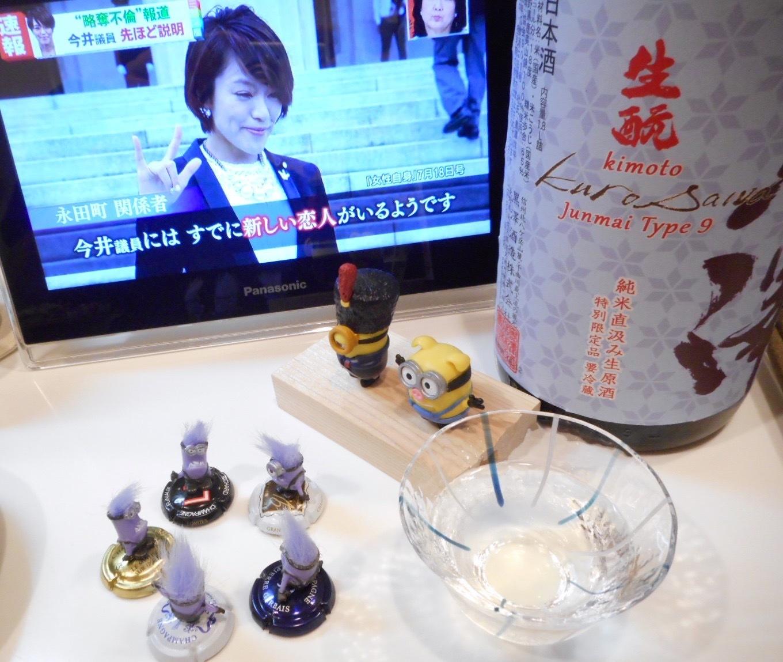 kurosawa_type9_28by18.jpg