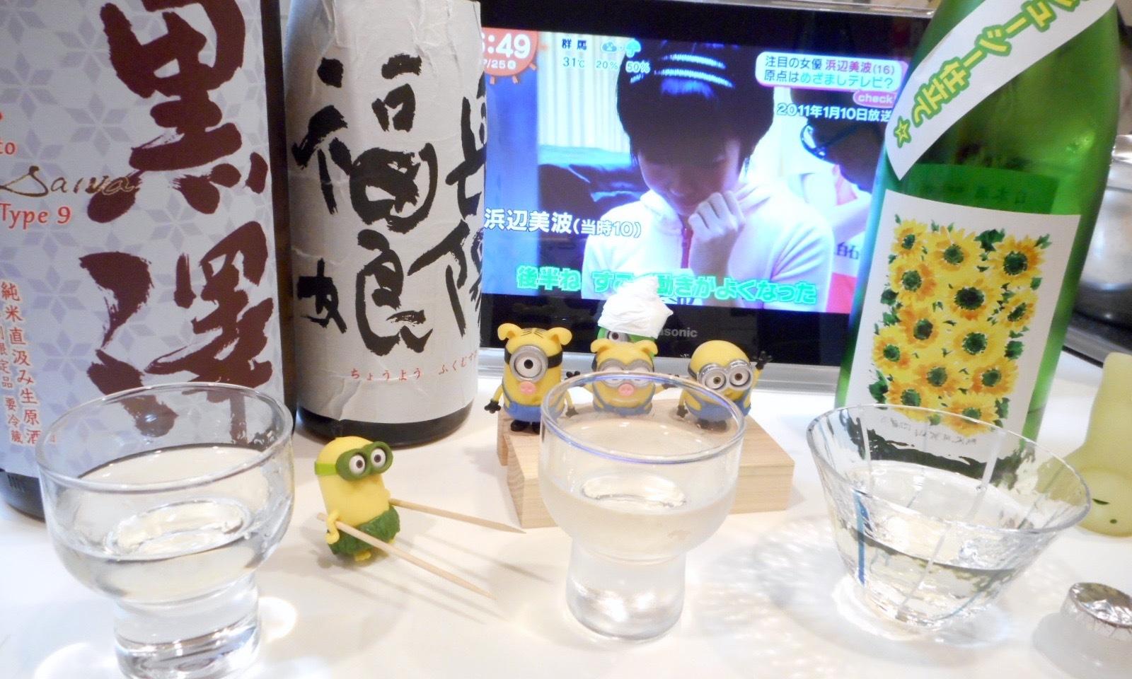 kurosawa_type9_28by7.jpg