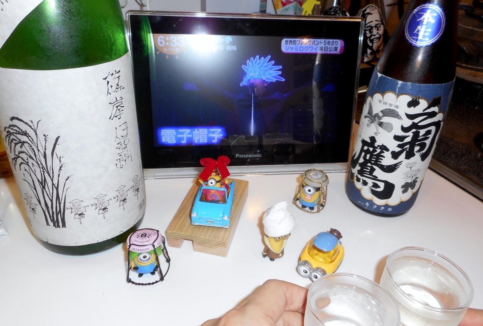 shinomine_isenishiki27by11.jpg