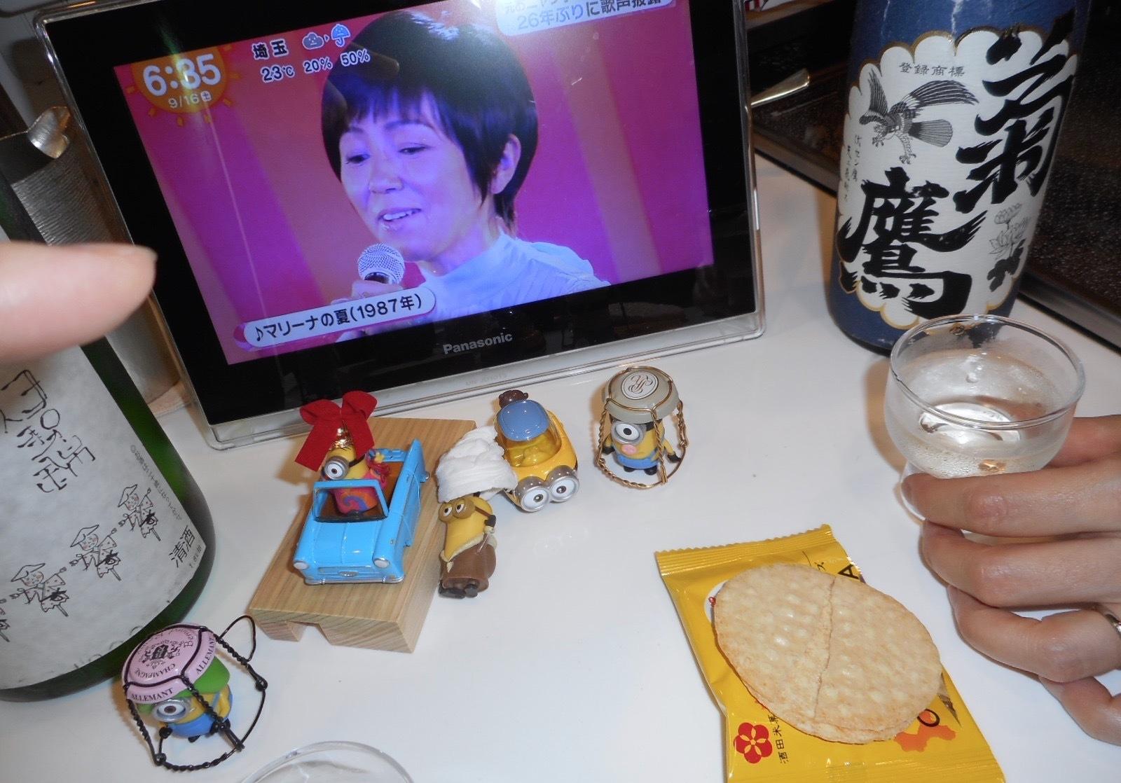 shinomine_isenishiki27by12.jpg