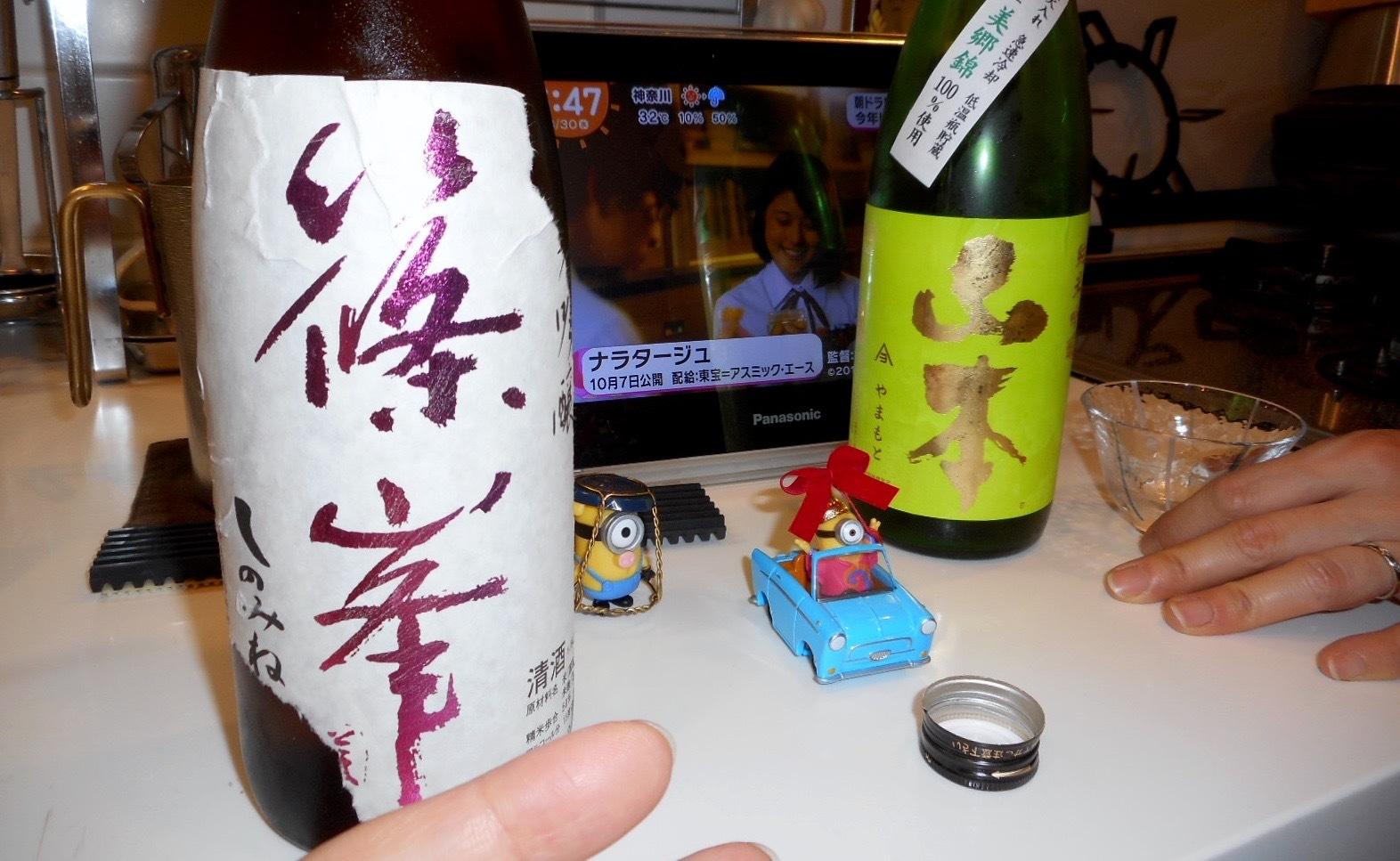 yamamoto_misatonishiki55_28by10.jpg