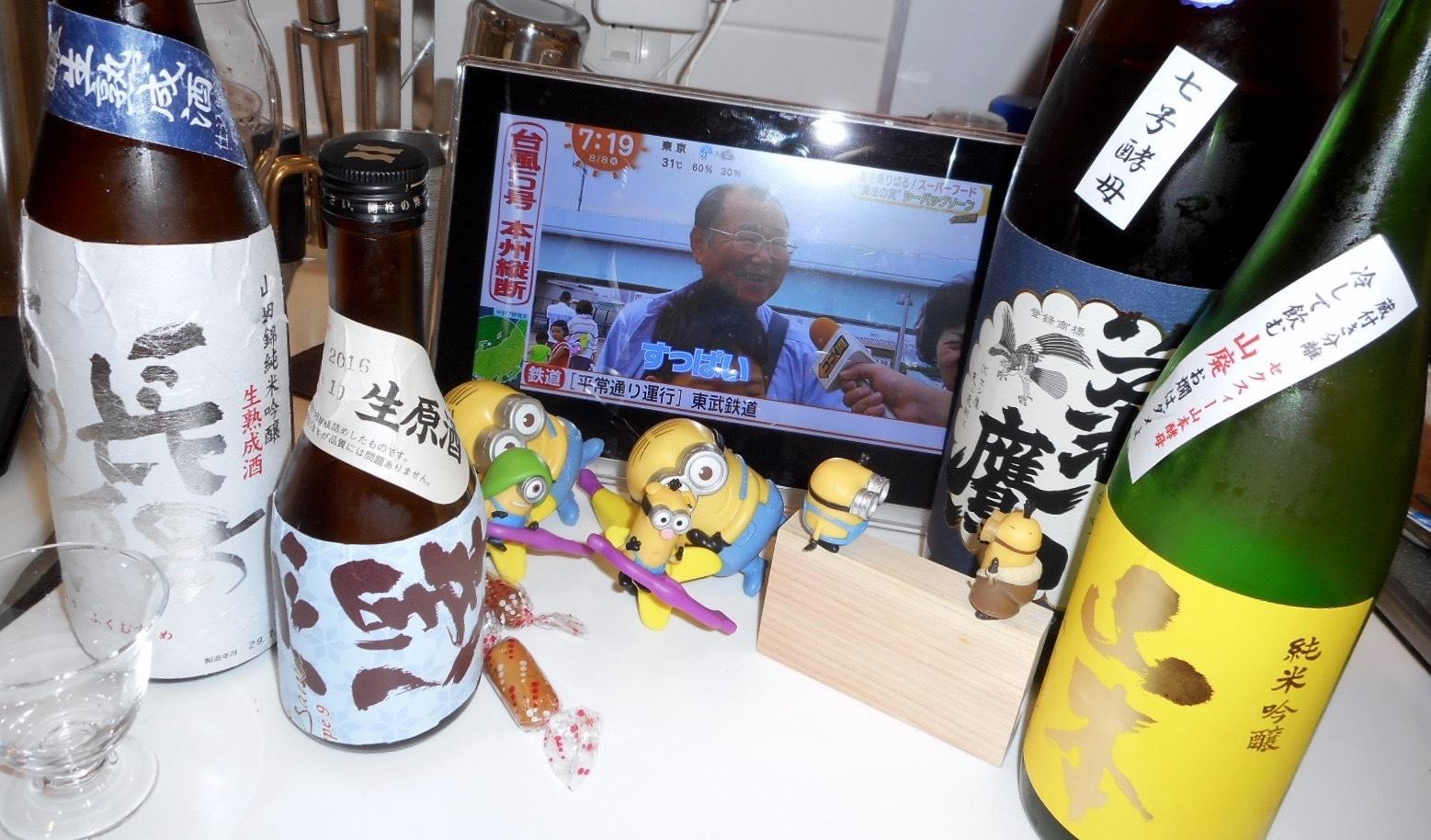 yamamoto_yellow28by13.jpg