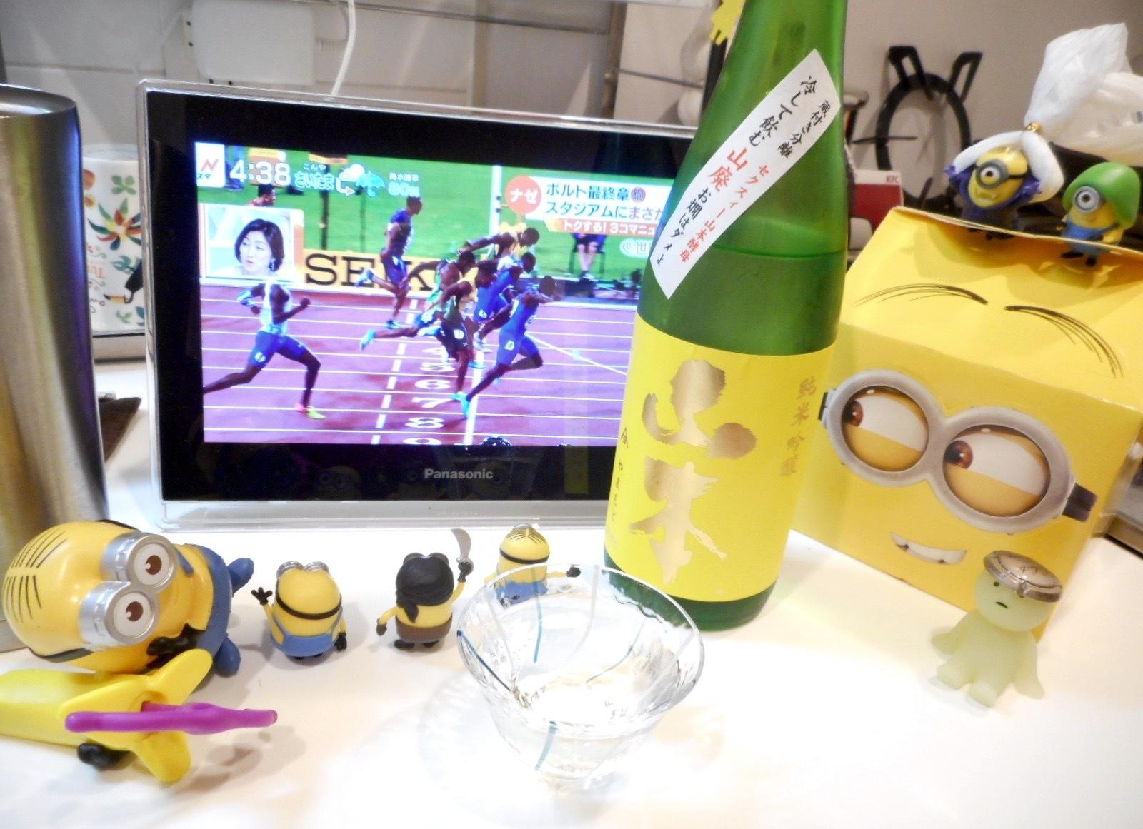 yamamoto_yellow28by6a.jpg