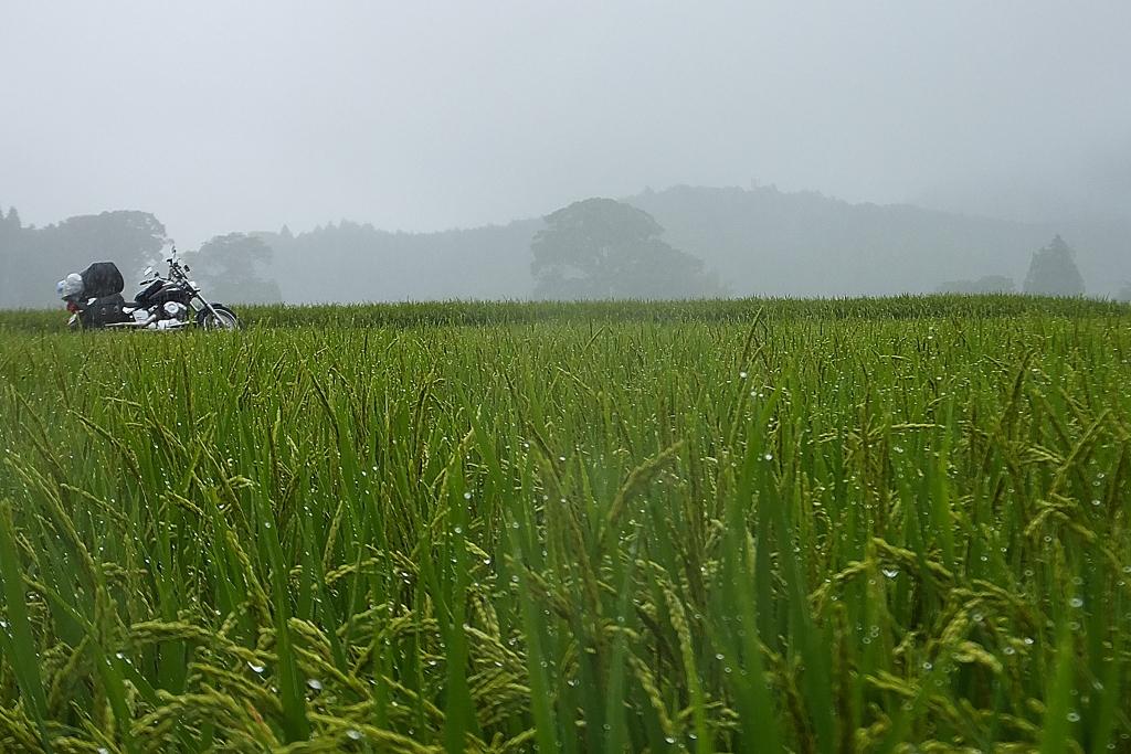 FP 2泊3日北関東雨キャンツー 107