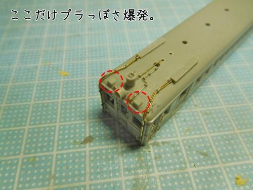 DSCN9728.jpg