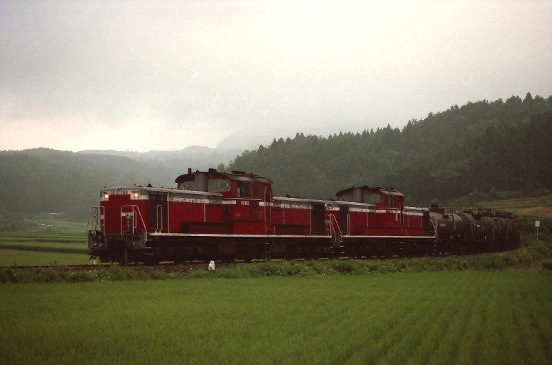 FNO9416_09_DD51784_940807_HADACHI_WAKIMOTO.jpg