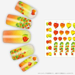 hozu-chip.jpg