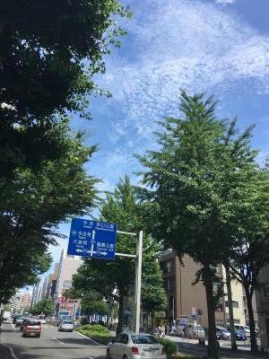 2017.6.9名古屋ランチ10