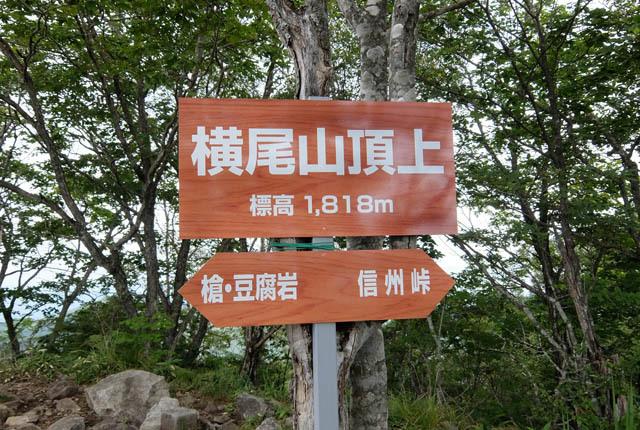 5172 横尾山頂標識 640×430