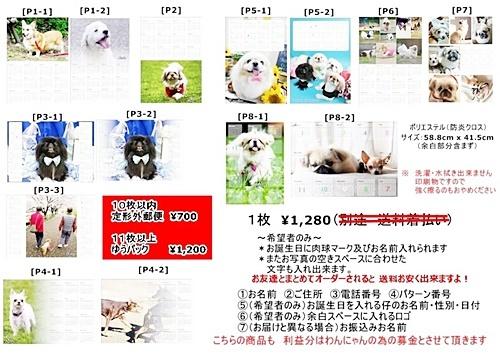 moblog_24b9b8e8.jpg
