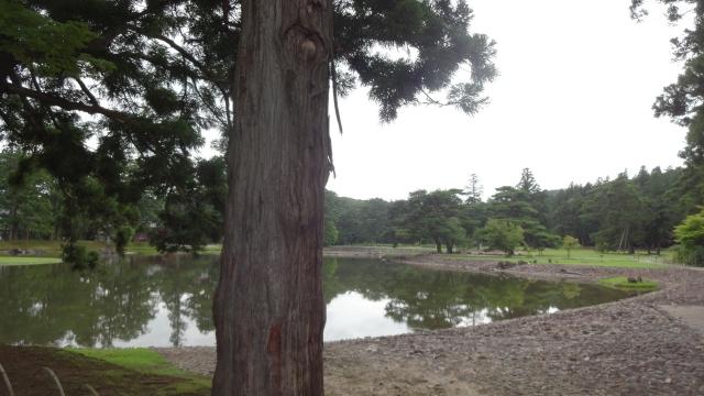 毛越寺境内 大泉か池